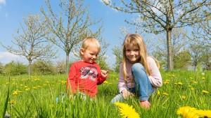 wiosna megajunior blog